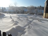 cabut-neige-14334