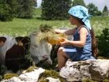 photo-sur-la-route-du-lait-4228